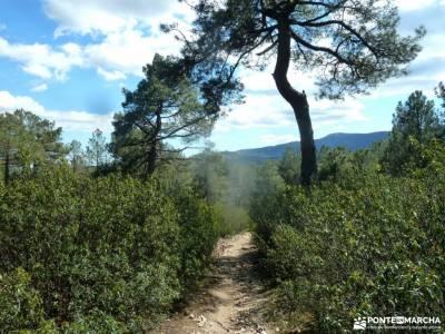 Cuerda Escurialense y Cuelgamuros;pantano de san juan valle de baztan jerte en flor parque natural o